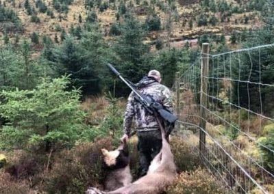 Unaccompanied Woodland Stalking – Roe Bucks – £230