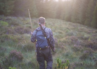 Unaccompanied Roe Doe, Red And Sika Hind Stalking – £480